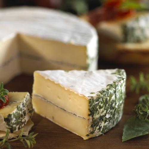 Layered Brie with Erb closeup 1